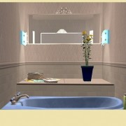 calipip-sims_new_age_living-7